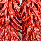 Red Chilis Stock Photography