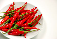 Red chilis peppers on white plate. Red chili peppers on white plate on white background Royalty Free Stock Photos
