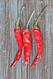 Red chilis Royalty Free Stock Photo