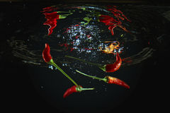 Red chill peppers Royalty Free Stock Photography