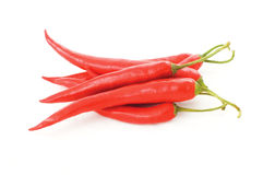 Red chilli stock photos