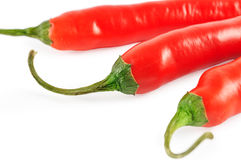 Red chilli Stock Image