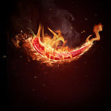 Red chilli. Pepper in flames stock images