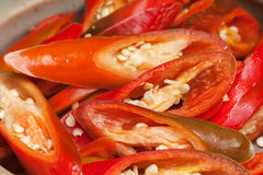 Free Red Chilli Stock Image - 37529621