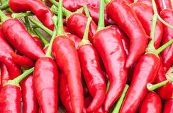 Red chilli. For background use Stock Photography