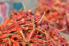 Red chilli bunch. Here is a beautiful shot of a stack of red hot chilli Royalty Free Stock Photo