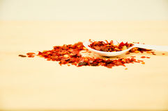 Red Chilli flake with a white spoon Stock Photos