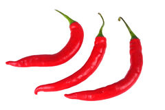 Red Chilli. Isolated picture of Red Chilli on white background stock photos