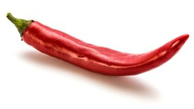 Chilli Pepper. Red Chilli isolated on white backgroundn royalty free stock photography