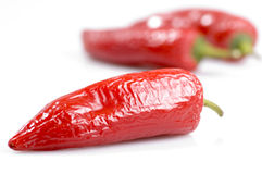 Red chilli pepper. Isolated red chilli pepper partially dried Royalty Free Stock Images