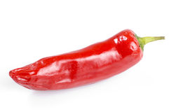 Red chilli pepper. Isolated red hot chilli pepper Stock Photography