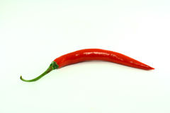 Red chilli pepper. On white background Stock Images