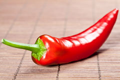Red chilli pepper Royalty Free Stock Photos