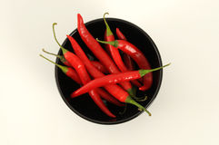Red chilli pepper Royalty Free Stock Image
