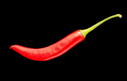Red Chilli Pepper. Red hot chilli pepper on black background Royalty Free Stock Photos