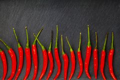 Red chilli pepper is a dark background. Chili pepper is decomposed in a row Stock Image