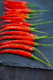 Red chilli pepper is a dark background. Stock Photography