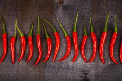 Red chilli pepper is a dark background. Chili pepper is decomposed in a row Stock Photography