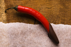 Red chilli pepper with dark chocolate Royalty Free Stock Image