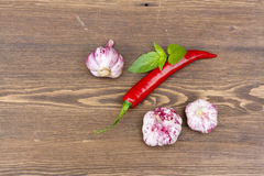 Red chilli pepper and garlic with green basil on wooden table Stock Photos