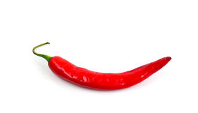 Red chilli pepper isolated on white. Stock Photo: red chilli pepper isolated on white Royalty Free Stock Photos