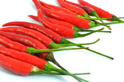 Red chilli pepper isolated. On white background Royalty Free Stock Photography