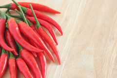 Red chilli pepper or paprika Stock Images
