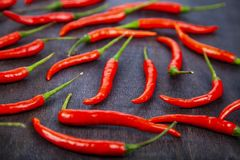 Red chilli pepper Stock Image