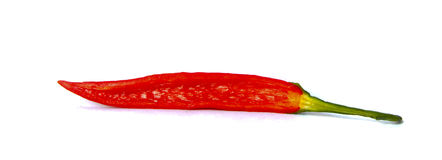 Red chilli pepper Royalty Free Stock Photography