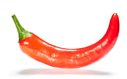 Red chilli pepper with shadow Stock Images