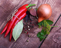 Red chilli pepper and spices Stock Photography
