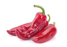 Red chilli pepper on white Royalty Free Stock Photos