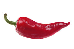 Red chilli pepper on white. Red chilli pepper closeup isolated on white royalty free stock image