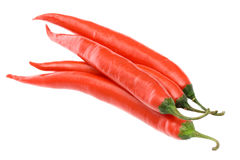 Red chilli peppers. Red hot chilli peppers on white Royalty Free Stock Photos