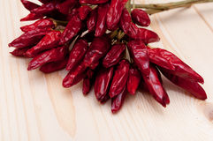 Red Chilli Peppers Stock Image