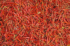 Red chilli peppers. Dry red chilli peppers background Royalty Free Stock Images