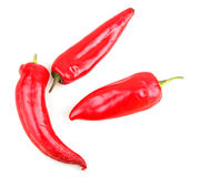 Free Red Chilli Peppers Stock Images - 29709564