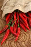 Red chilli peppers Stock Photography