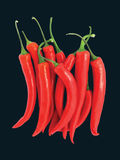 Red Chilli Peppers With Clipping Path. Red hot chilli peppers on black background with clipping path Stock Image