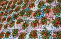 Red chilli peppers on the Cutting Board Stock Images