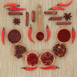 Red Chilli Peppers and Spices Royalty Free Stock Image