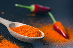 Red chilli peppers, spicy on a wooden spoon. Chilly on a wooden spoon. Vegetable. Concept of hot food. Stock Images