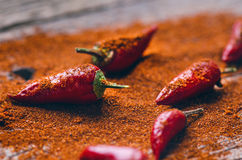 Red chilli peppers, spicy on a wooden spoon. Vegetable on a dark, wooden table. Concept of hot food. Stock Photos
