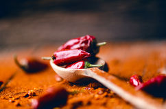 Red chilli peppers, spicy on a wooden spoon. Vegetable on a dark, wooden table. Concept of hot food. Stock Photography
