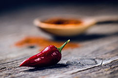 Red chilli peppers, spicy on a wooden spoon. Vegetable on a dark, wooden table. Concept of hot food. Stock Image