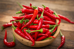 Red chilli peppers Stock Images