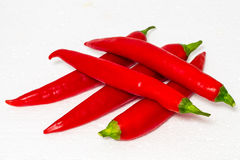 Red chilli or chili pepper  Royalty Free Stock Image