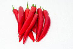 Red chilli Royalty Free Stock Photo