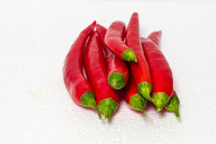 Red chilli Stock Images