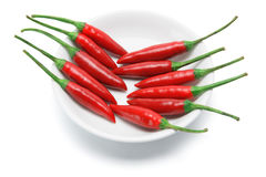 Red Chilli on Plate Stock Photos